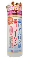 HYALCOLLABO MOIST LOTION / Глубокоувлажняющий лосьон (с наноколлагеном и наногиалуроновой кислотой)